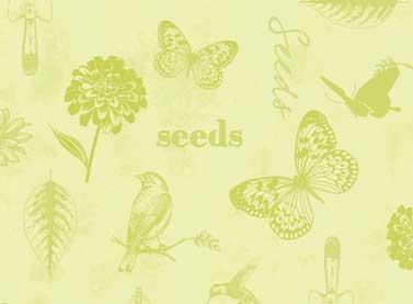 Light Green Seeds- Adalee's Garden LTGRE1