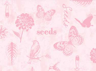 Pink Seeds- Adalee's Garden LTPIN1