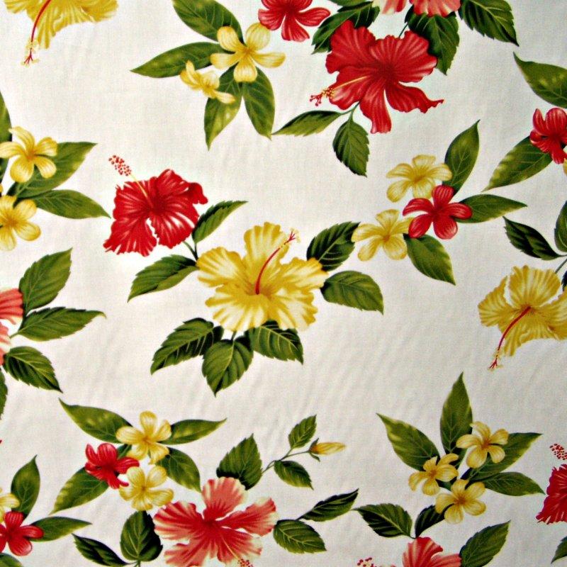 Hibiscus Flowers - White