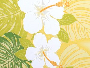 Hibiscus & Monstera ~ Double Border Print ~ Yellow
