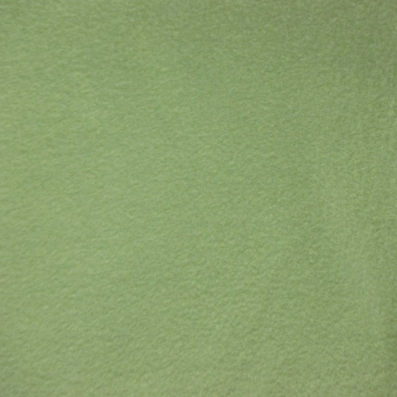 Solid Fern Green Fleece