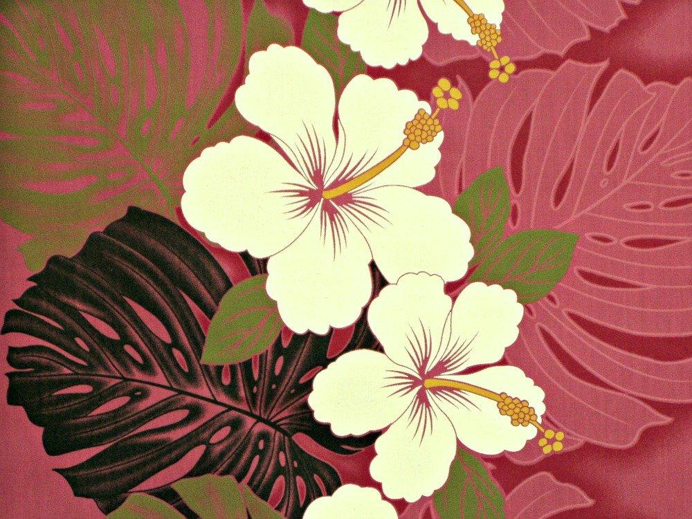 Hibiscus & Monstera ~ Double Border Print ~ Pink