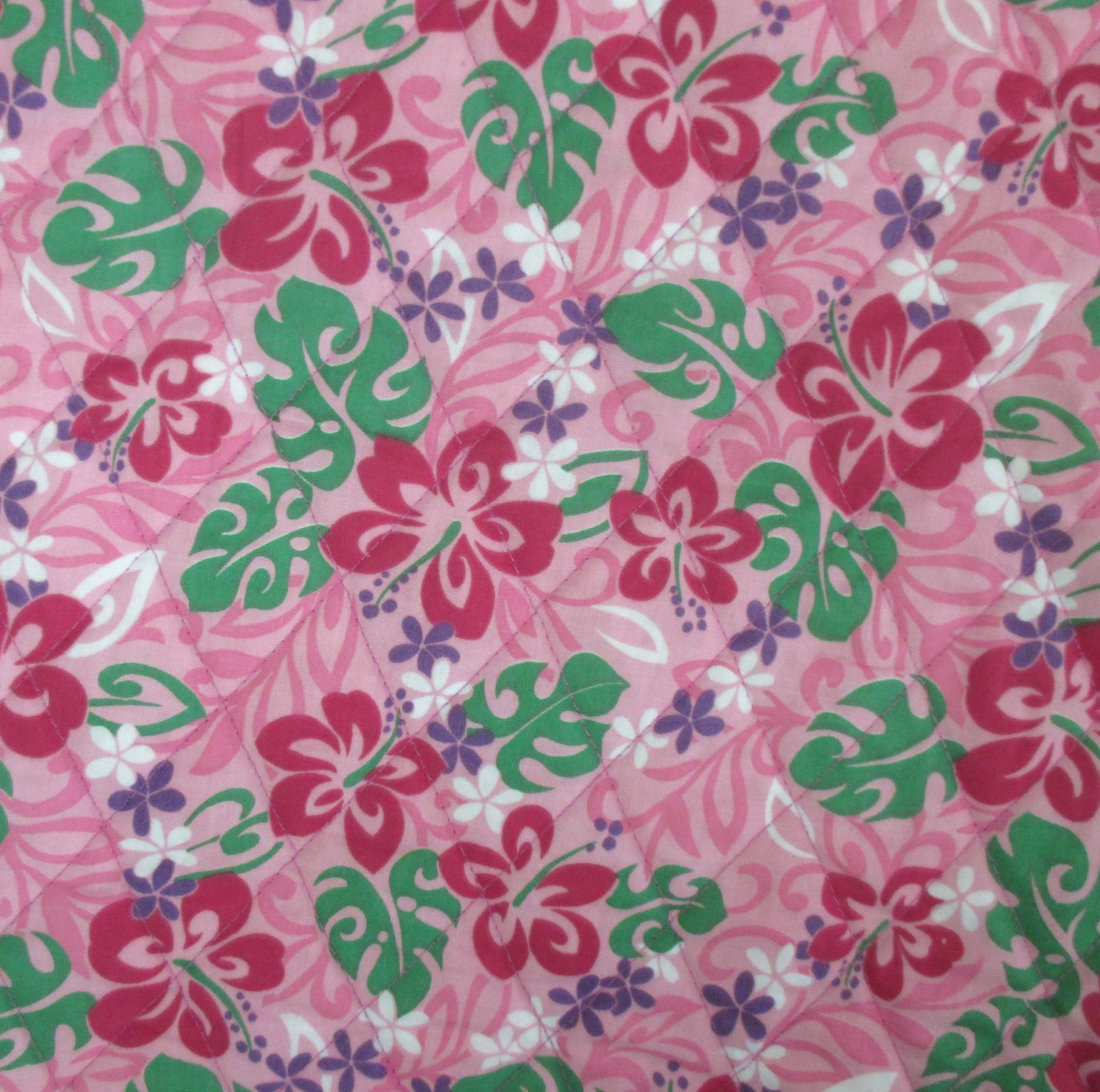 Pink Hibiscus - Pink Leaves
