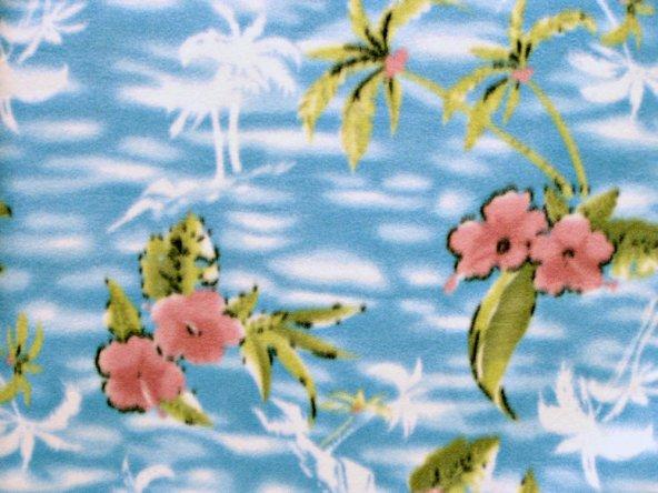 Hibiscus & Palms