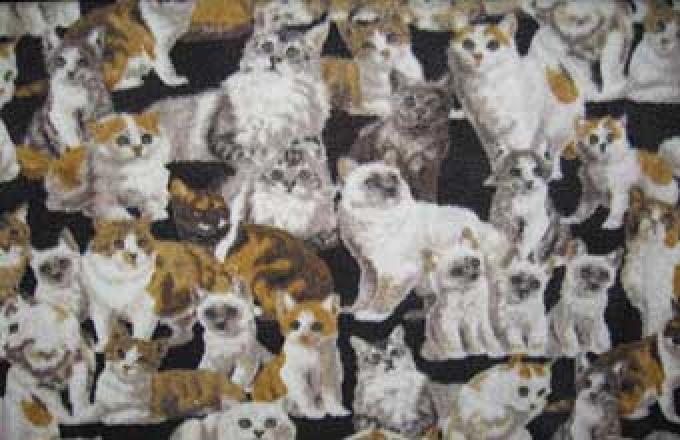 Animals Fleece - Cats