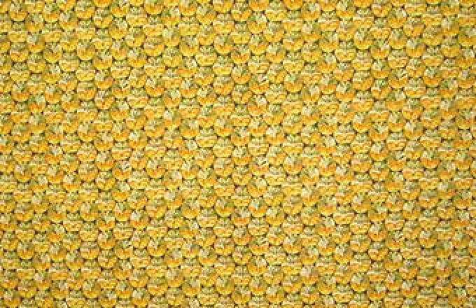 Fruit Ladies - Pineapples