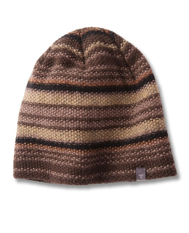 Toad & Co Men's Birch Stripe Beanie