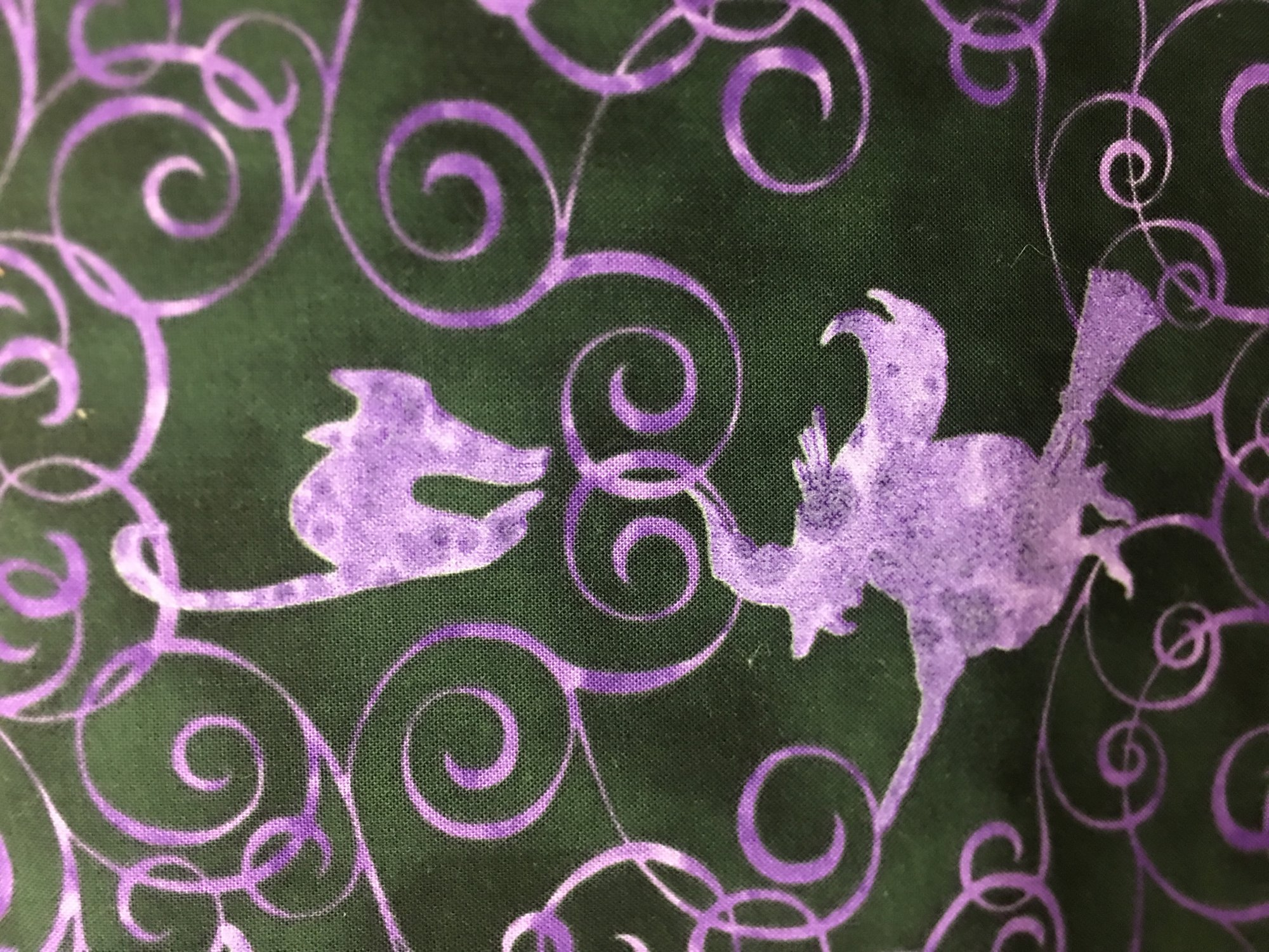 Blank Quilting FrightNight Black Witches Glow in the Dark