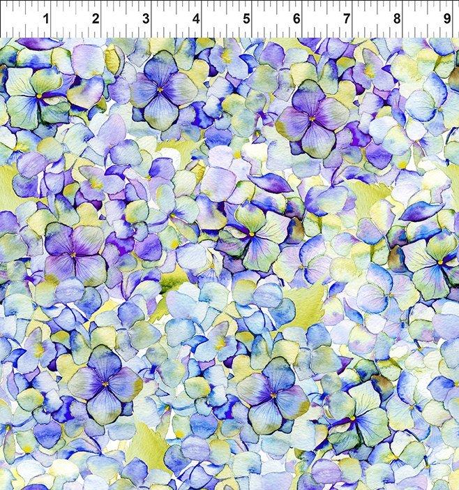 Patricia Hydrangea - Purple