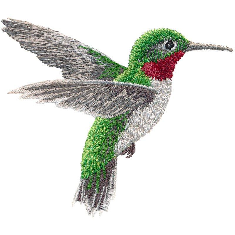 OESD Hummingbird Dance CD