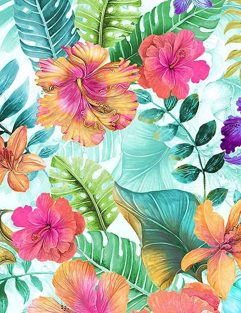 Hibiscus - Multi