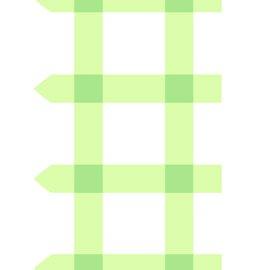 Sunrise Studio - Lettuce Fabric