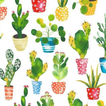 Cacti - White Fabric