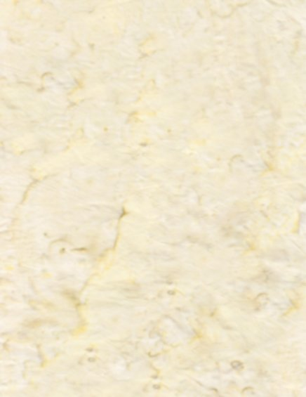 Anthology Basic Solids Tan