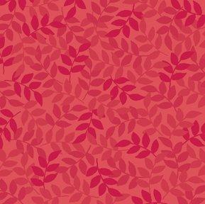 Harmony Flannel Leaf Geranium
