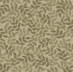 Harmony Flannel Leaf Sage