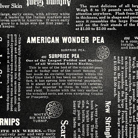 Newsprint Black