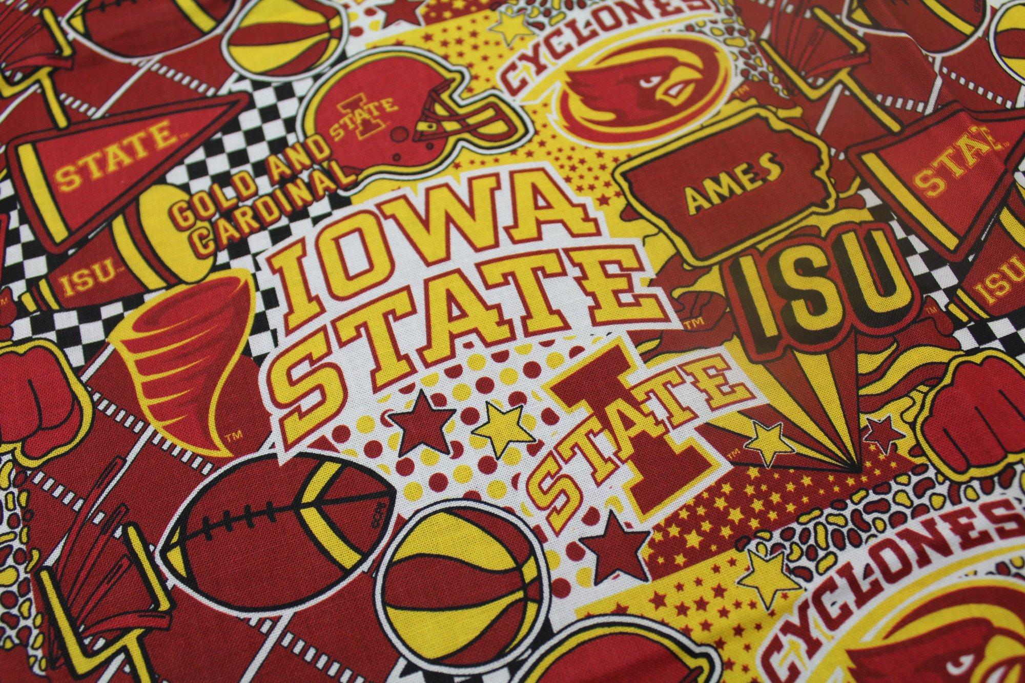 NCAA - Iowa State University Cyclones Pop Art 1165