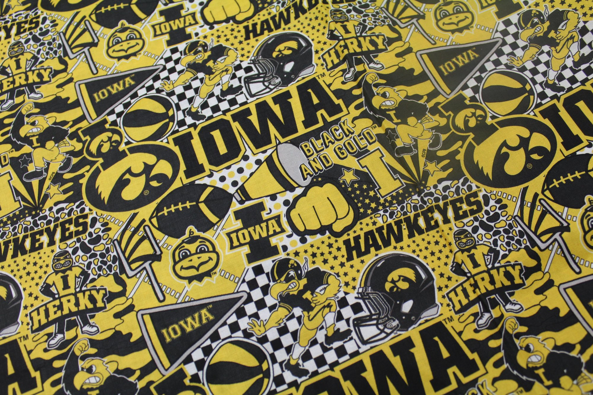 Iowa Hawkeyes Pop Art 1165
