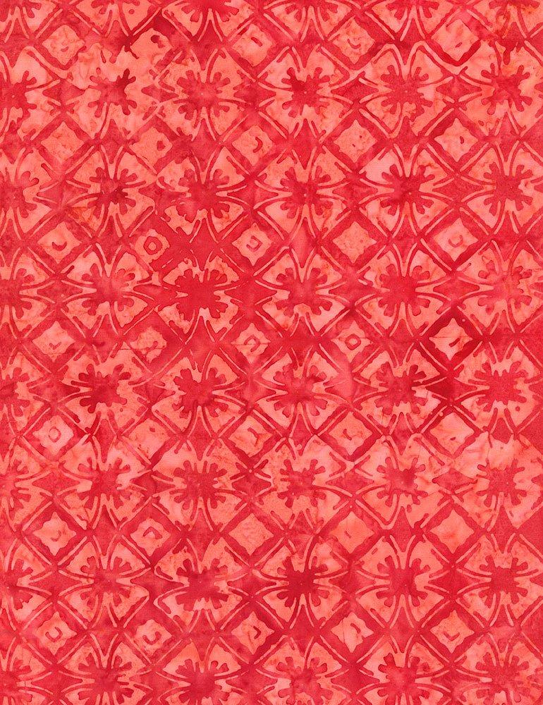 Tonga-B6037-Tomato