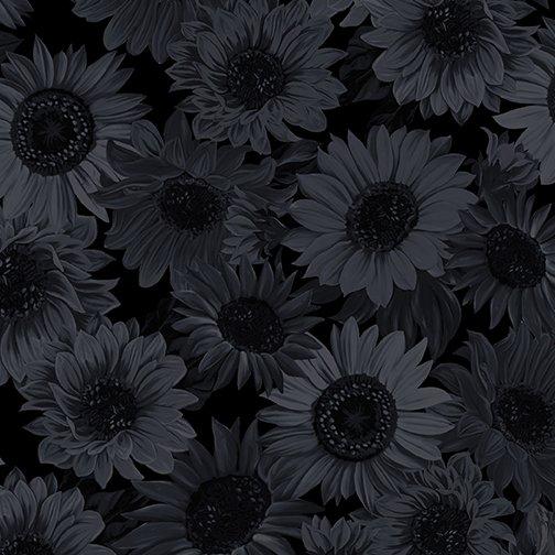 Sunflower Whisper Black 108