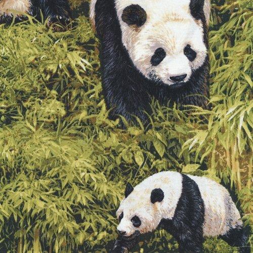 Born Free 112-31951 Panda