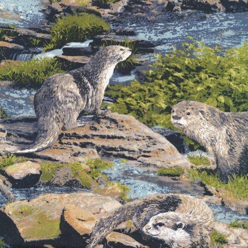 Born Free 112-31971 Otter