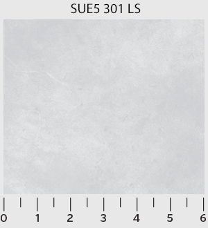 Suede 301 LS