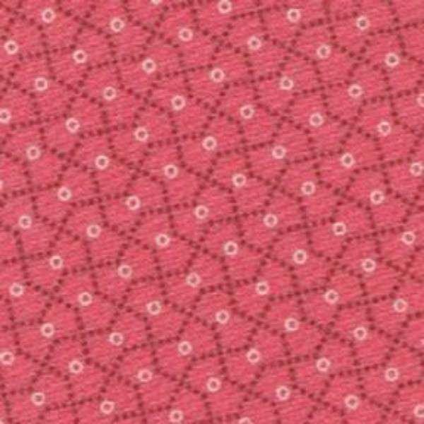 Paula Barnes Companions Pink