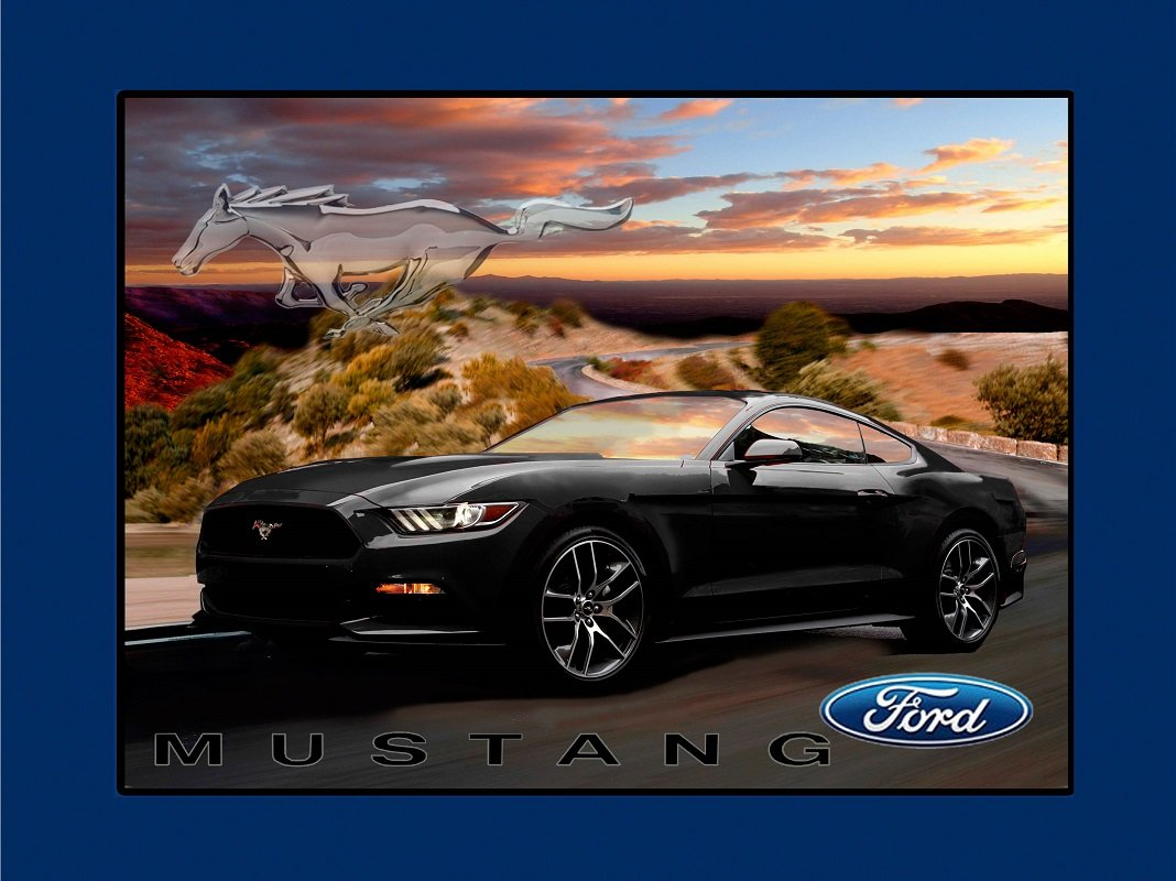 Ford black mustang panel