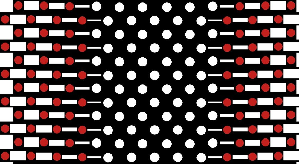 Blank Quilting Dotsy