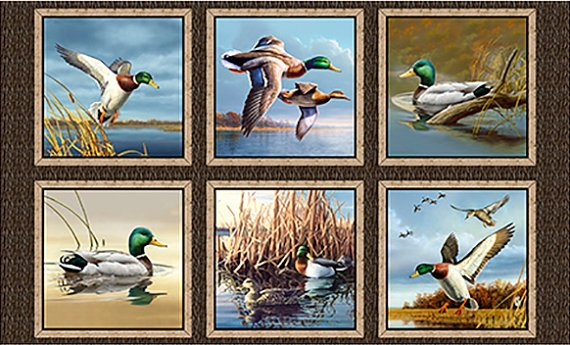 Quilting Treasures Duck Lake Panel