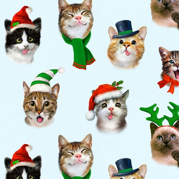 Christmas Selfies - Cats on Blue by Howard Robinson for Elizabeths Studio