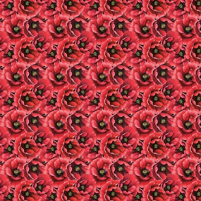 Ooh La La - Packed Poppies in Black Multi by Michel Design Works for Northcott