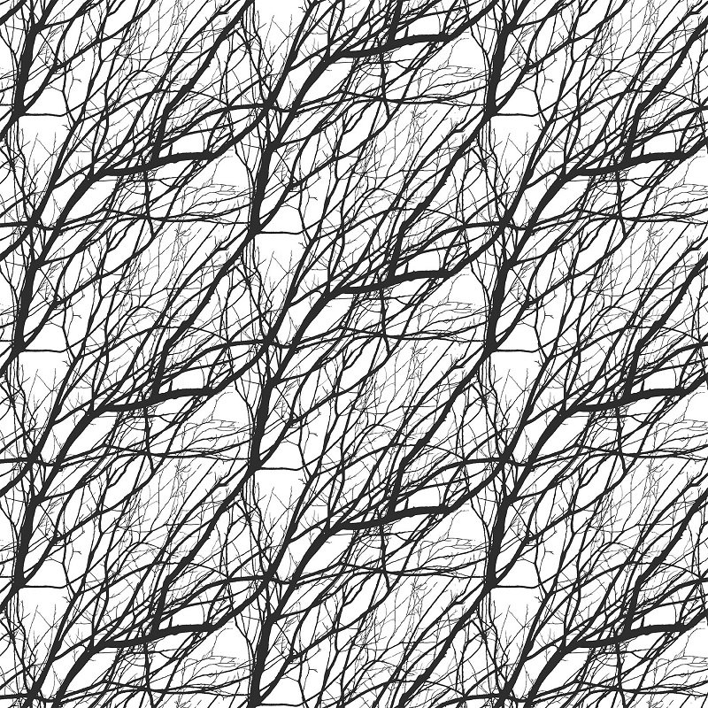 Silhouette - Branches in Black / White by Deborah Edwards for Northcott