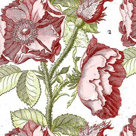 Hatters Tea Party - Antique Rose in Antique Pink by Janet Wecker-Frisch for Quilting Treasures
