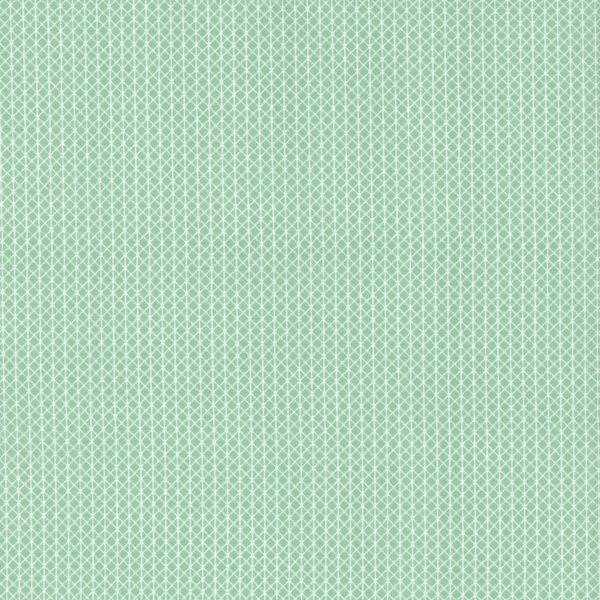 Cotton + Steel Basics - Netorious in Jam Jar by Cotton + Steel