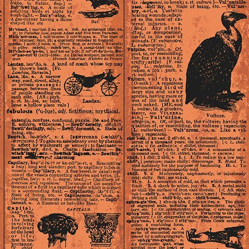 Chillingsworth's Spooky Ride - Dictionary Pages on Orange by Echo Park Paper Co. for Andover