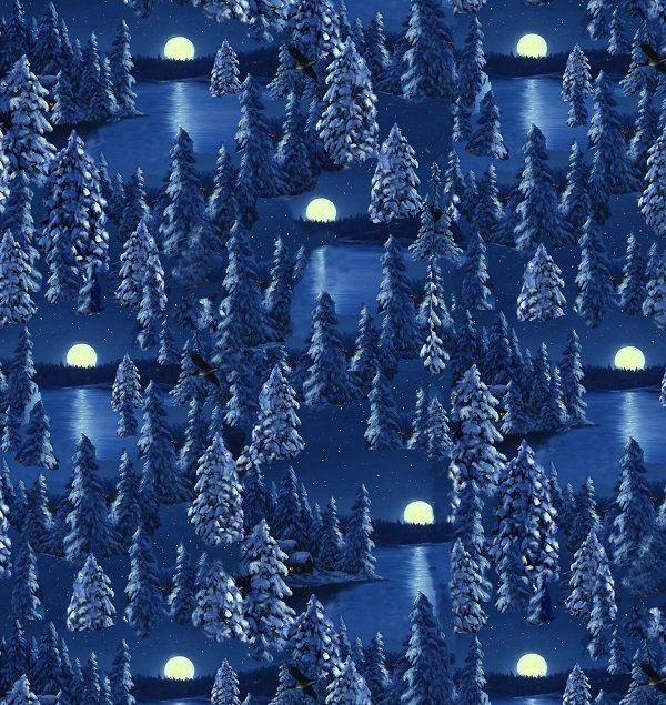 Let It Snow - Moon Scene in Multi by Linda Picken for Blank Quilting
