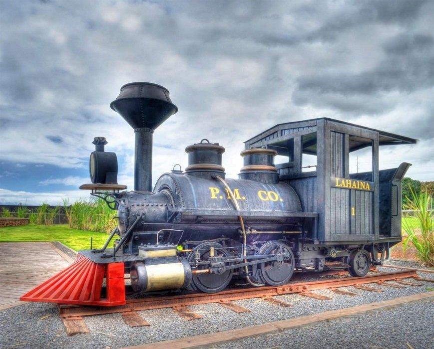 Panel - Train Engine (42 x 36) by Four Seasons for David Textiles (Digital)