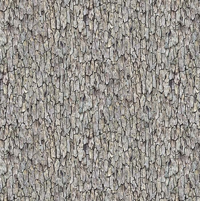 Naturescapes 2020 - Tree Bark in Gray by Deborah Edwards for Northcott