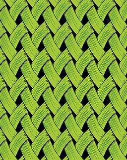 Brush Dance - Basket Weave in Lime by Susan Rooney for Benartex