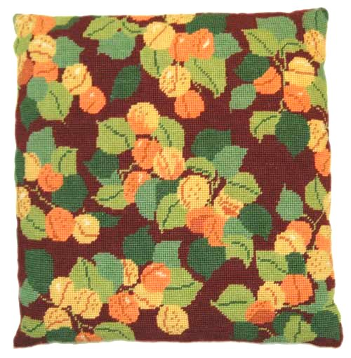 Needlepoint Pillow Kit Apricots