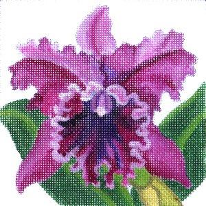 JulieMar Cattleya Orchid in pinks easy stitch