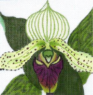 JulieMar Cattleya Orchid easy stitch