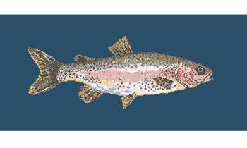 Rainbow Trout tapestry kit by Elizabeth Bradley