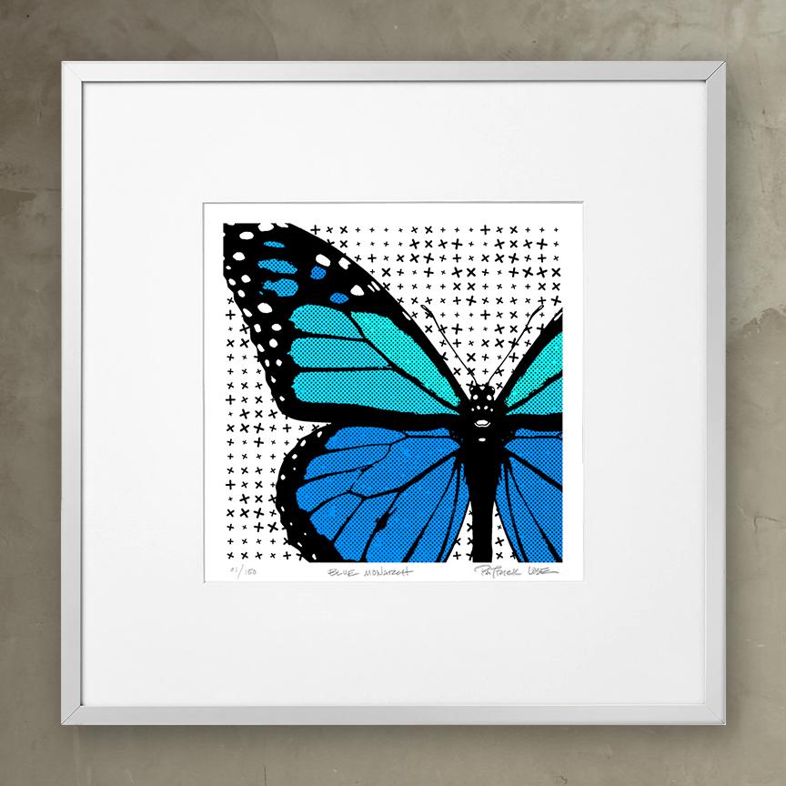 Framed Blue Monarch