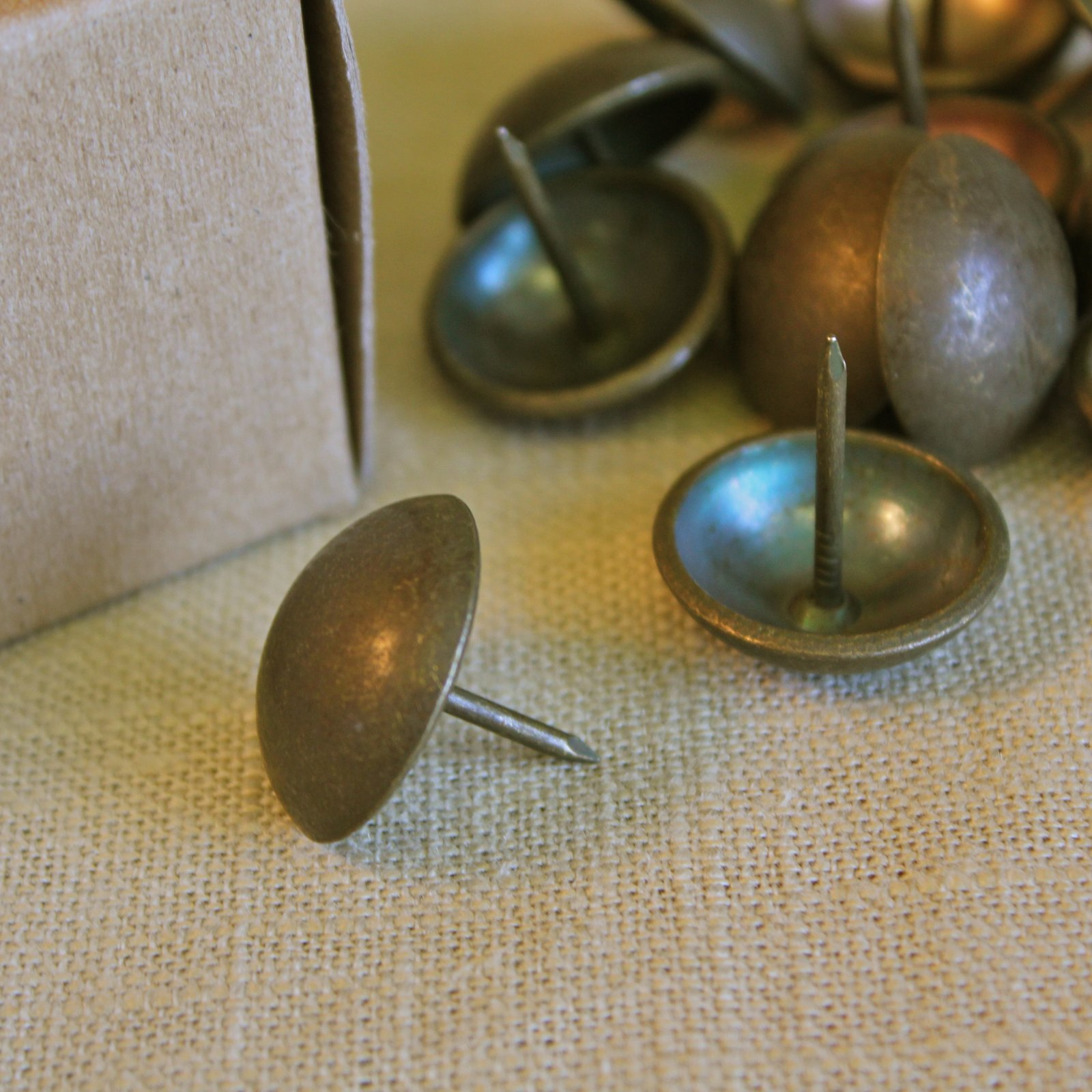 Extra Large French Natural Tacks