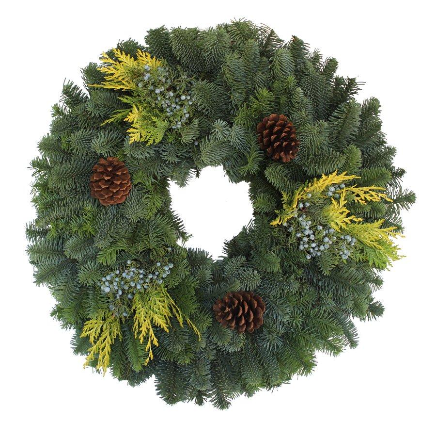 24 Mixed Noble Fir Wreath (Six Pack)
