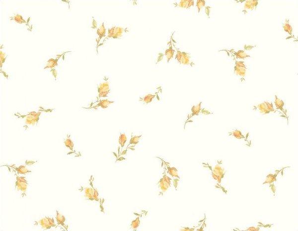Whisper Roses MAS8724-W